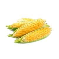 Fresh Corn Yellow 4 Ear PKG product image