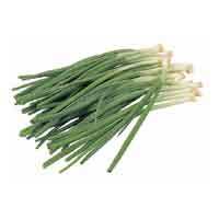 Onions Green Scallions 1 Bunch