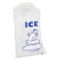 Store Brand Ice Cubes 10LB Bag