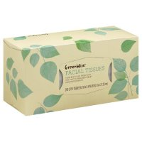 Store Brand Facial Tissue Recycled 200CT
