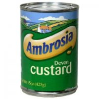 Ambrosia Devon Custard 14.1oz Can