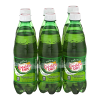 Canada Dry Ginger Ale 6PK of 16.9oz Bottles
