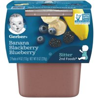 Gerber 2nd Foods Banana Mixed Berries 4oz 2PK