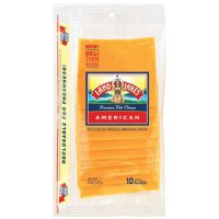 Land O Lakes Sliced American Yellow Cheese Deli Thin 10CT 8oz PKG