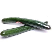 Hothouse  Cucumbers 1 EACH product image