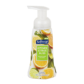 Softsoap Hand Soap Kitchen Fresh Hands 8oz BTL