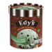 Edy's Ice Cream Mint Chocolate Chip 48oz CTN
